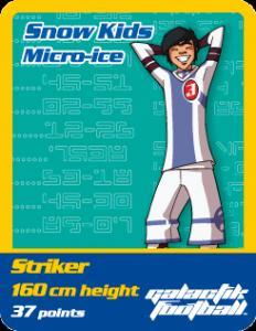 Micro-ice