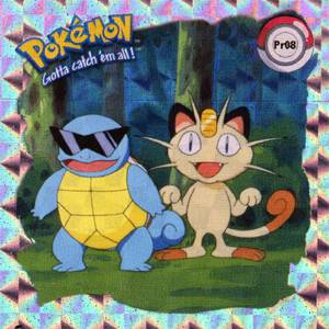 Squirtle a Meowth