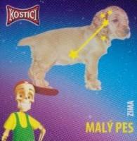 Souhvězdí Malý pes