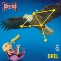 Souhvězdí Orel