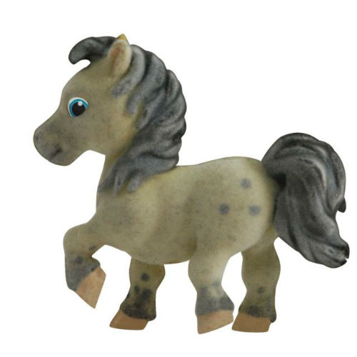 Agnus - Shetland Pony