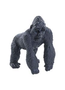 Gorila nížinná - Richard