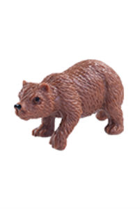 Medvěd grizzly - Helga