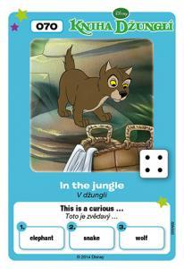 V džungli