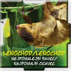 Lenochod