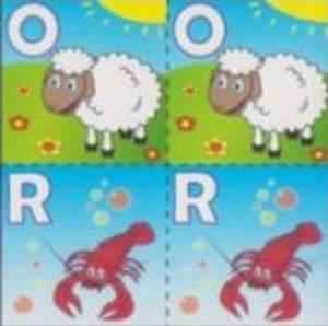 Ovce, Rak
