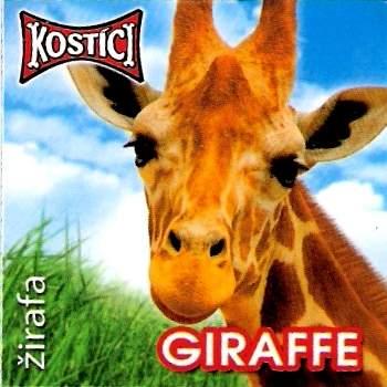 Giraffe - Žirafa