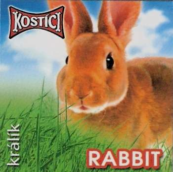 Rabbit - Králík