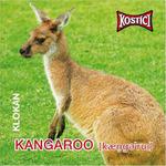 Kangaroo - Klokan