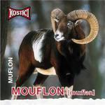 Mouflon - Muflon