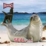 Seal - Lachtan