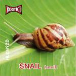 Snail - Hlemýžď