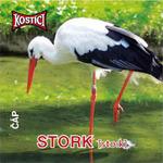 Stork - Čáp