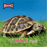 Turtle - Želva