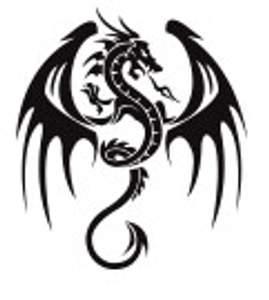Tetování - drak