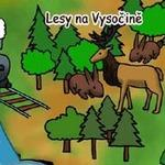 Lesy na Vysočině