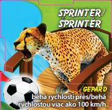 Sprinter - Gepard