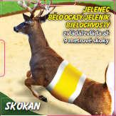 Skokan - Jelenec běloocasý