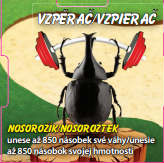 Vzpěrač - Nosorožík