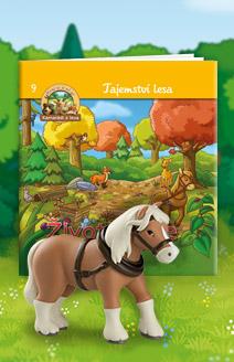Život koně
