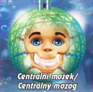 Centrální mozek