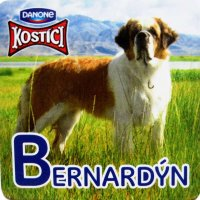 Bernardýn