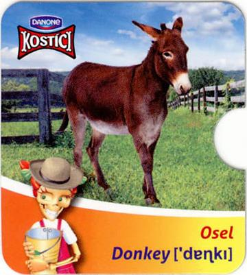 Osel - Donkey