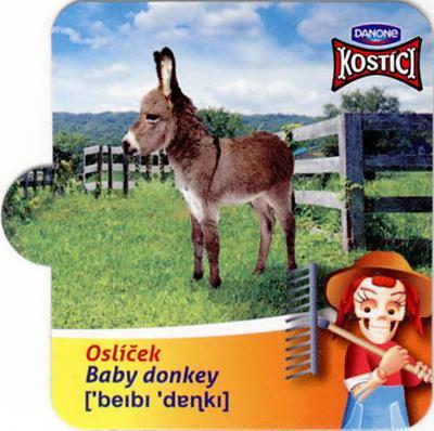 Oslíček - Baby donkey
