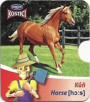 Kůň - Horse