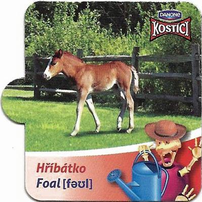 Hříbátko - Foal