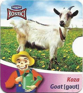 Koza - Goat