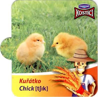 Kuřátko - Chick